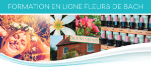 formations-en-ligne-fleurs-de-bach